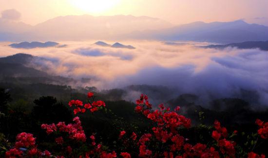 春满大别山 去薄刀锋看云海