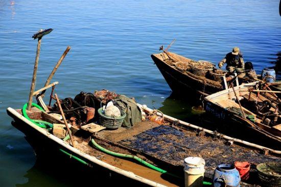 亲自体验出海打渔的乐趣