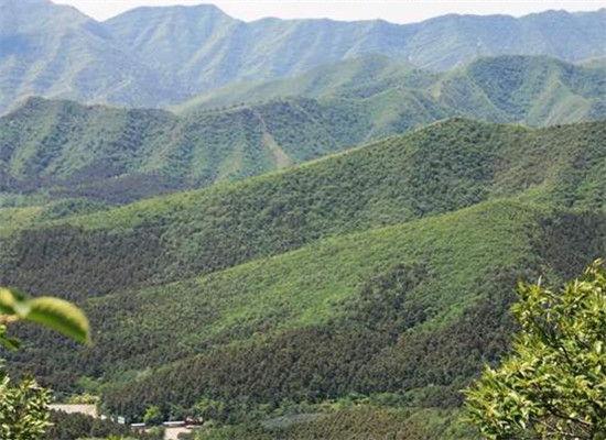 园内栖息着400多种野生动物和昆虫.