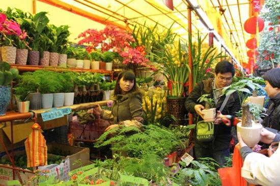 花卉市场里的卖花姑娘