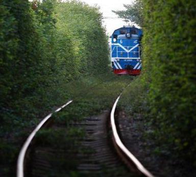 """将意境进行到底 西安""""小清新""""铁路"""