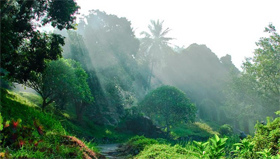 儋州温泉国家森林公园