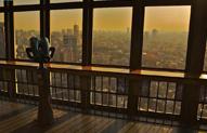 东京塔上俯瞰全城