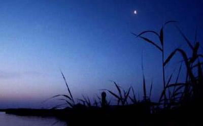 宁夏沙湖夜景