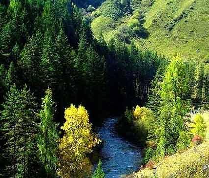 甘南州卓尼大峪沟4A级旅游景区