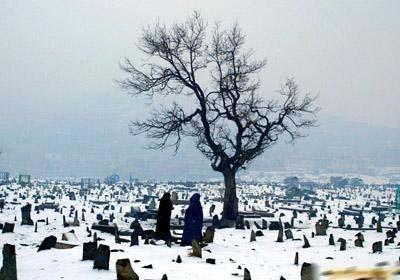 3、1月13日,在阿富汗首都喀布尔,阿富汗妇女从白雪覆盖的墓地走过。