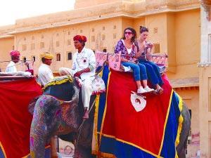 印度斋普尔的大象旅游队很受女性游客追捧