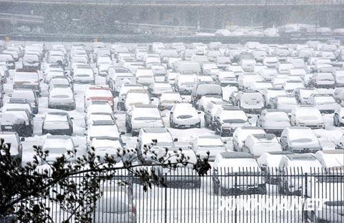 3月2日,在纽约拉瓜地机场,众多车辆滞留在停车场上。新华社记者谷欣容摄