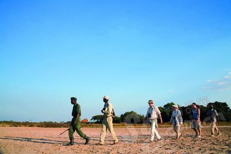 如果没有向导的带领你很难走出非洲大草原