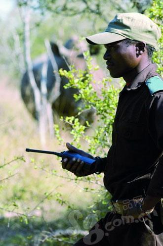 一个很好的向导是探秘非洲大草原的前提