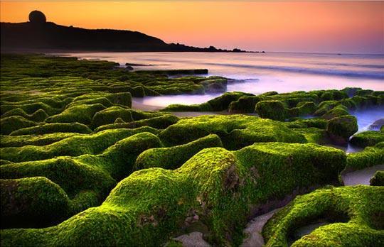 老梅位于台北县石门乡,就在北台湾三角之一--富贵角的旁边,其岩石、沙丘形成多种特殊景象,如礁岩海岸披满青苔,造形神奇的风棱石等,因海水侵蚀海面形成曲折的青绿色块状石区!