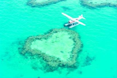 大堡礁:徜徉天地间的自由人