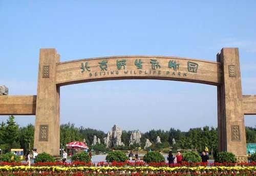 春节玩转北京野生动物园(图)