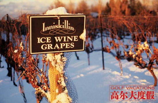 冰酒也是尼亚加拉一大名产