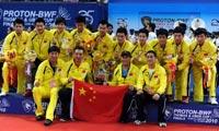 2010年汤尤杯羽毛球赛