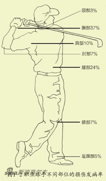 图1-2 职业球手不同部位的损伤发病率
