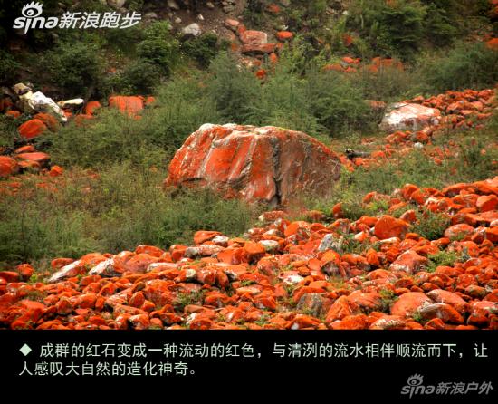 成群的红石与清澈的流水相伴而下,变成一种流动的红色,让人感叹大自然的造化神奇。