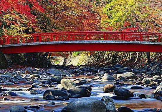 修善寺自然公园