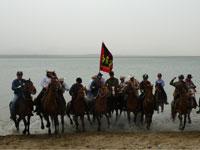 马疯窝:一群爱马的疯子 因马而聚以马为欢