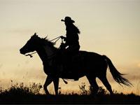 马友亲历:马背走遍中国 千里骑行始于足下