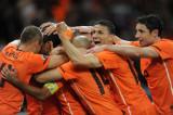 荷兰队庆祝进球