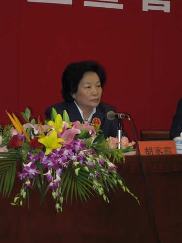 图文-智运会中国代表团成立中国代表团团长胡家燕