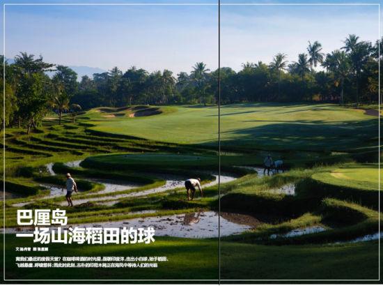 一场山海稻田高尔夫的球