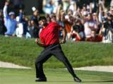 图文-2008路透年度精彩图片伍兹为小鸟球兴奋不已