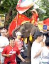 图文-北京奥运圣火在曼谷传递 大象也来助阵