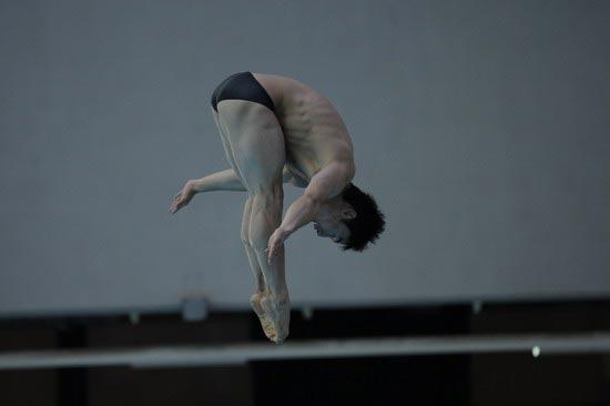 图文-国家跳水队赴香港访问表演 这就叫标准