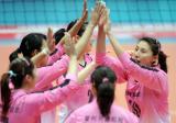 图文-女排联赛天津3-0山东天津女排击掌鼓劲